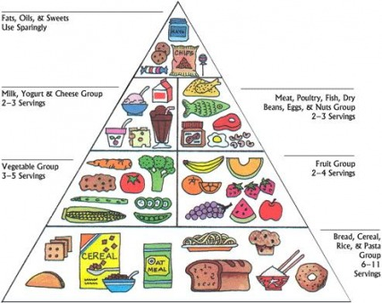 Food pyramid - HOW TO LOSE WEIGHT